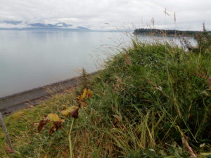 East End Road for Sale, commercial real estate in Alaska
