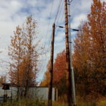 picture of real estate commercial land on olive road in Anchorage Alaska. Yellow trees in fall.