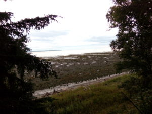 Inlet in Alaska, Residential property land for sale